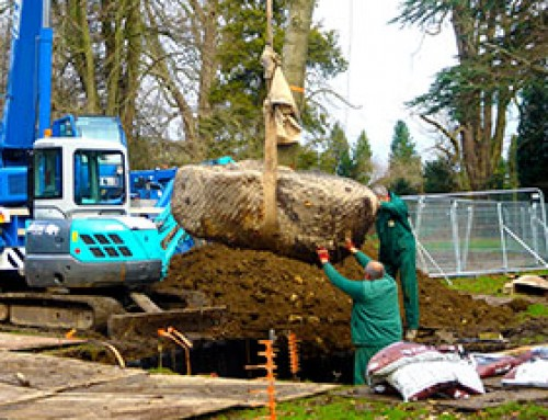 PLANT A TREE FOR THE QUEEN'S DIAMOND JUBILEE